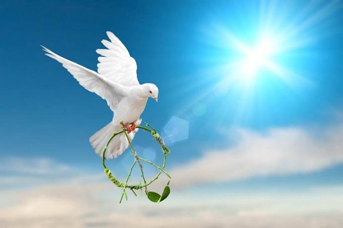 vign3_Dove-of-Peace
